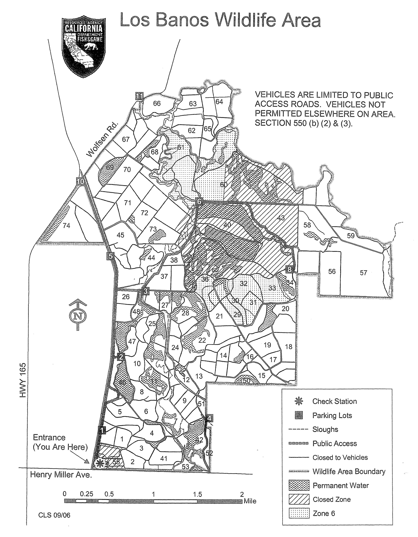 Los Banos Wildlife Area We Ve Moved To Www Legallabrador