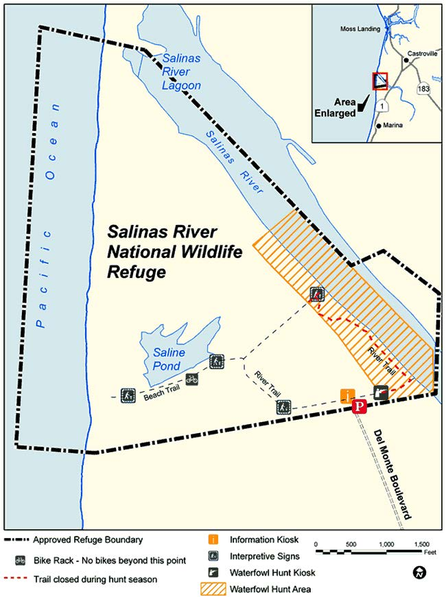 Salinas river national wildlife refuge we 39 ve moved to for California 1 day fishing license