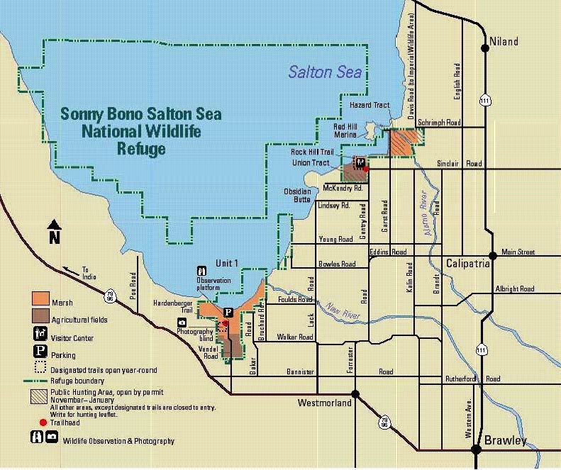 Sonny Bono Salton Sea National Wildlife Refuge Legal Labrador