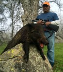 Up to 60 Permits for Deer and Pig in Merced and Santa Clara Counties